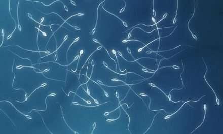 Impatto della infezione da SARS-COVID2 sulla fertilità maschile